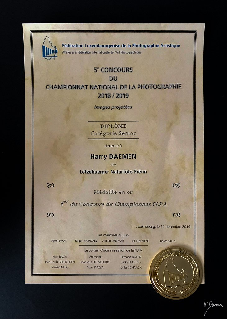 5-Concours-National-IMG-4186.jpg